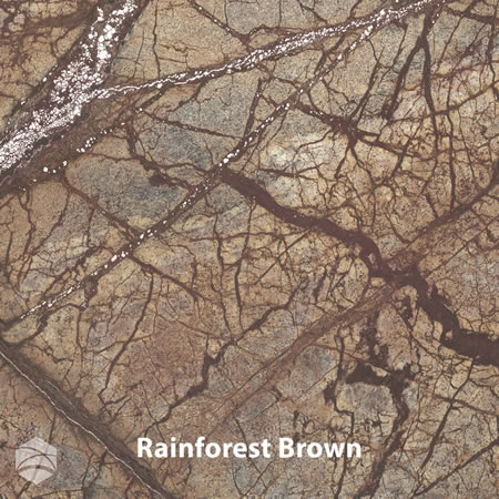Rainforest+Brown_V2_12x12