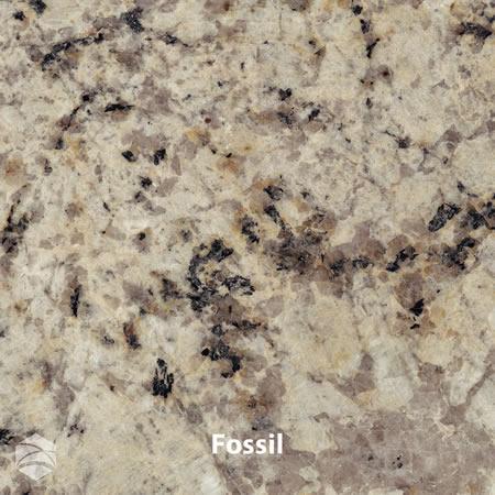 Fossil_V2_12x12