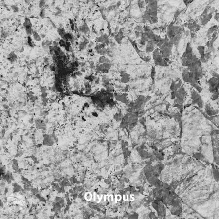 Olympus_V2_12x12